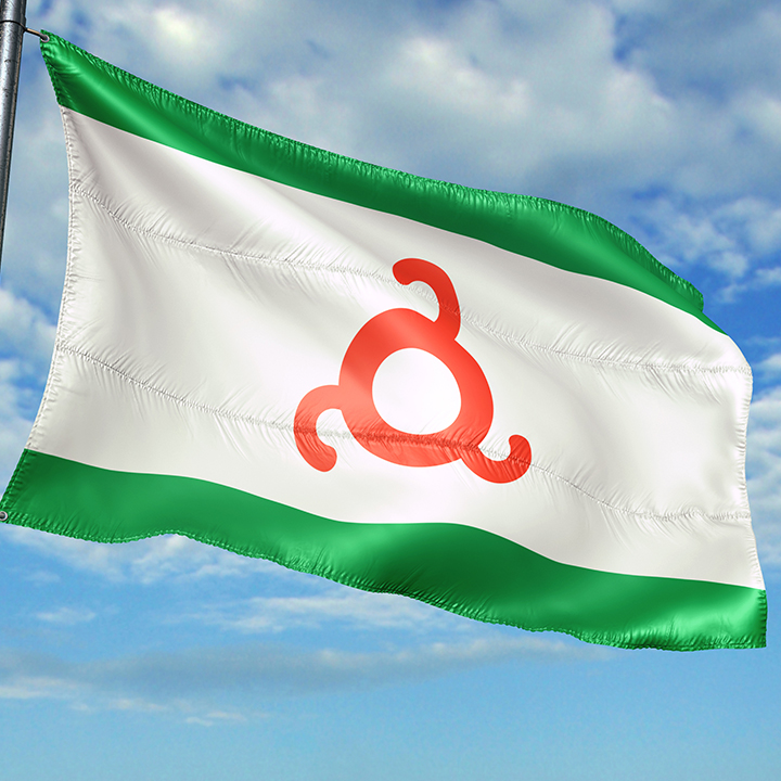 ингушский флаг фотографии опубликовала личном блоге