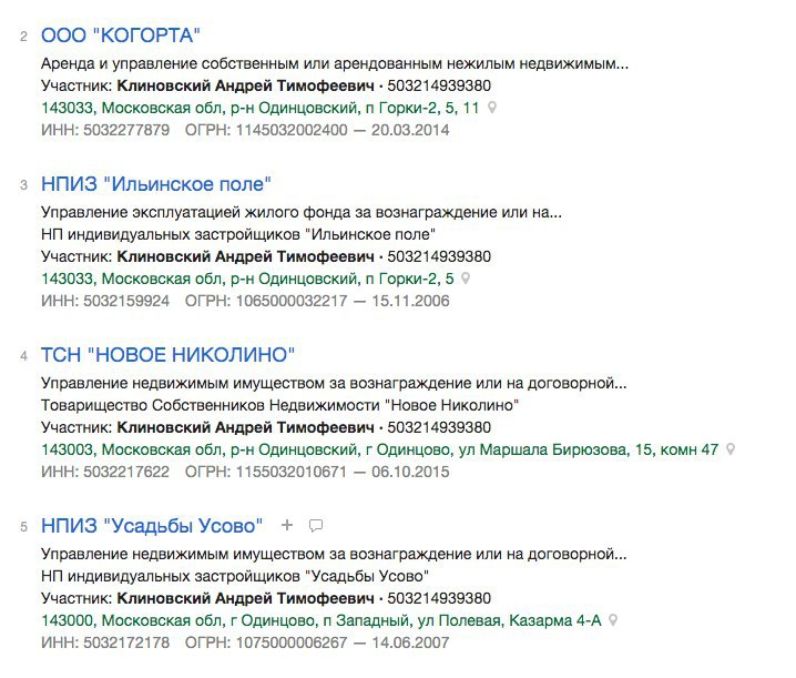 скриншот из базы данных юрлиц Контур.Фокус